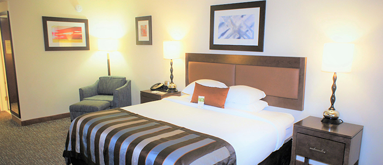 1 King Bed Non Smoking Room in Wingate by Wyndham Chattanooga Hotel